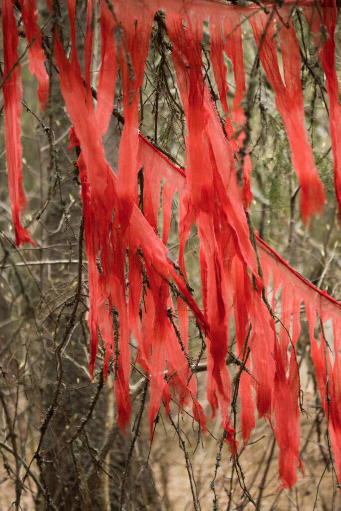 Grenar med röda textilfragment